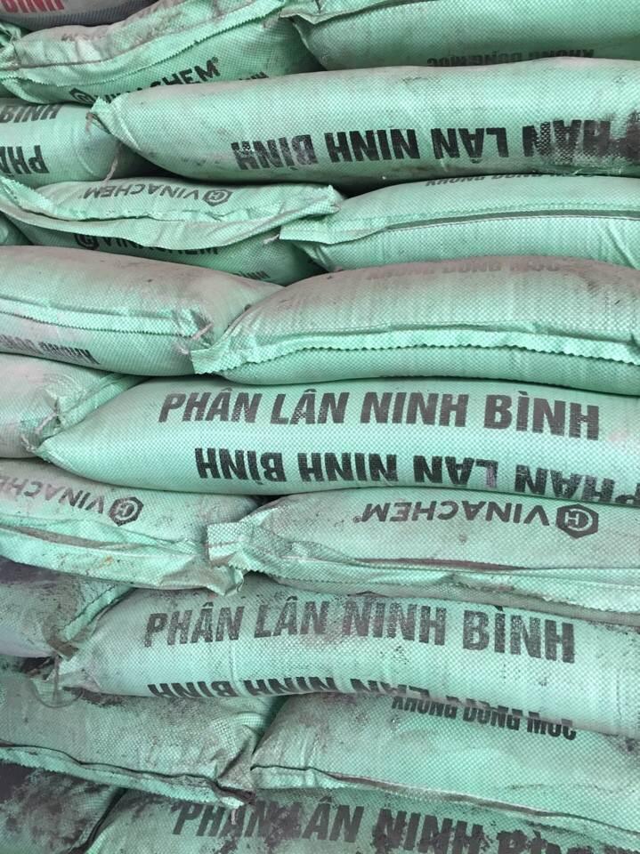 Phân Lân Ninh Bình