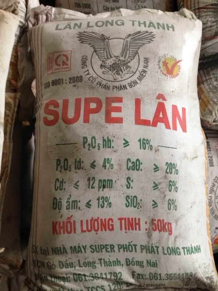 Supe Lân Bột long thành