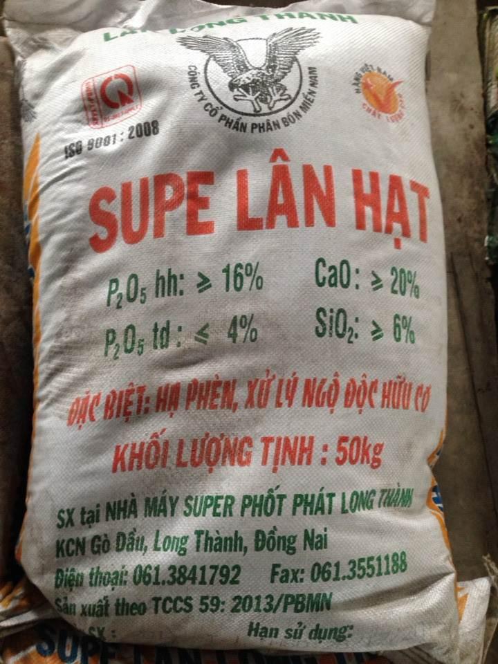 Supe Lân Hạt Long Thành