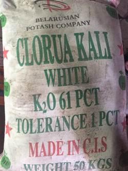 KCL - Kali trắng (Bột) hóa chất biên hòa đồng nai